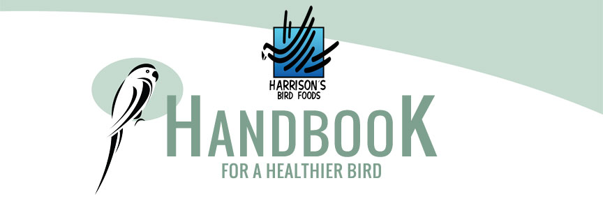 Harrison's Handbook For a Healthier Bird