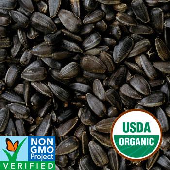 organic black sunflower seeds for chickens black sunflower seeds certified organic 5lb bag harrison s bird foods